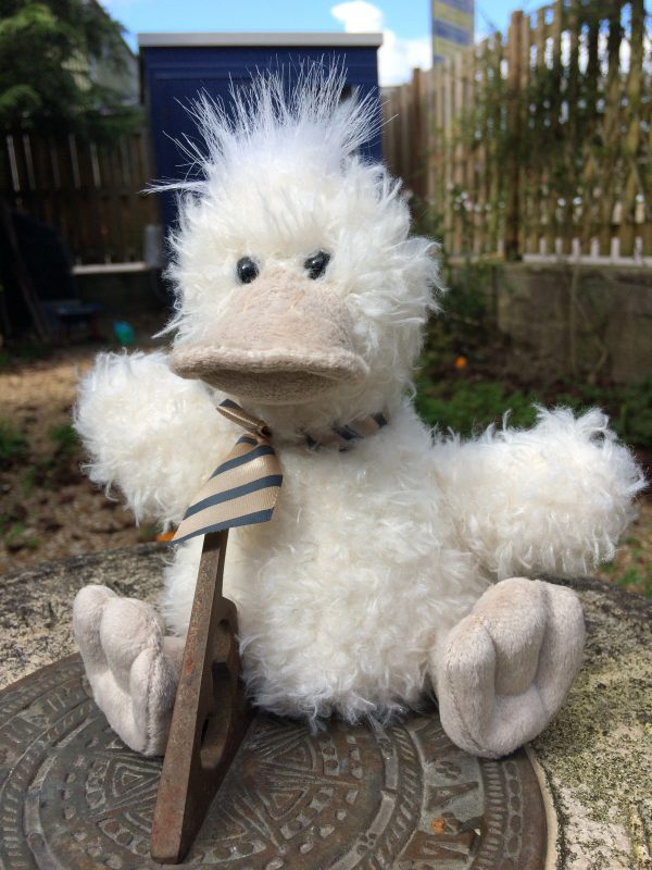 Arkwright the duck soft toy to accompany Sue's book of the same name