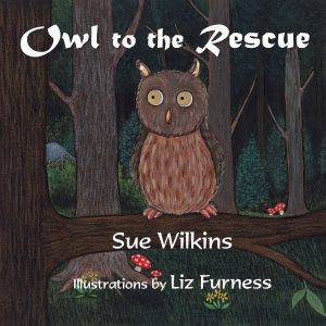 The front cover of Sue's book