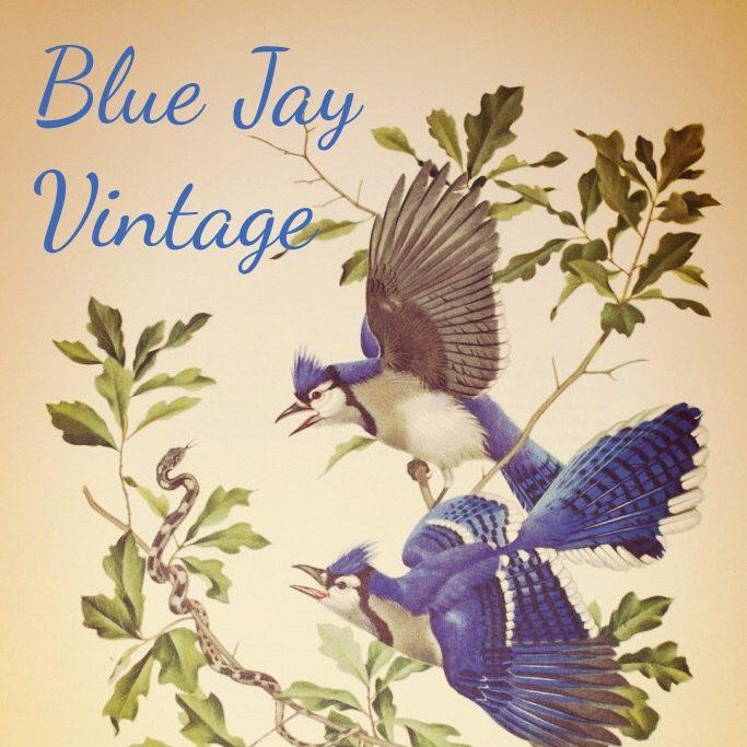 Blue Jay Vintage